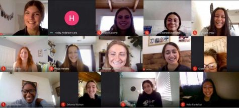 The AGHS Period. club has been meeting virtually to combat period stigmas and brainstorm ways to combat period poverty.