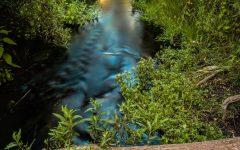 Photo of the Arroyo Grande Creek courtesy of John Ferebee photos