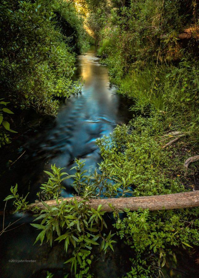 Photo of the Arroyo Grande Creek courtesy of John Ferebee photos